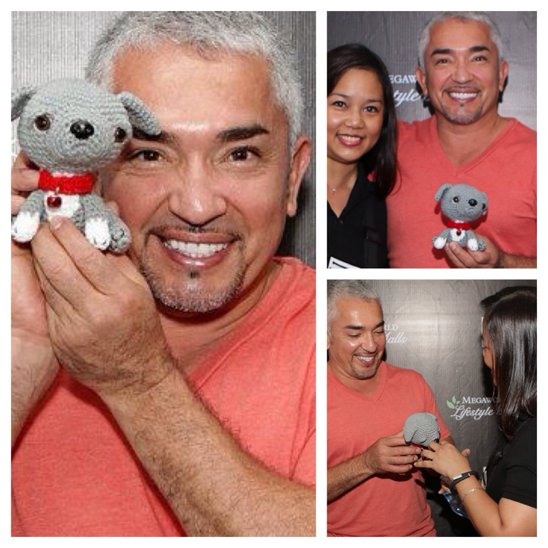 Cesar Millan Crochet Junior